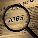 Amateur economist jobs